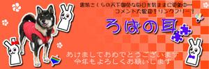 Top2011b_5