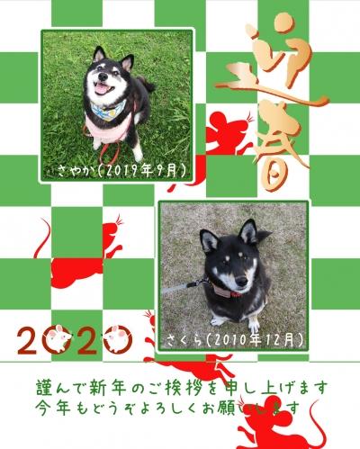 Photo_20191228211401